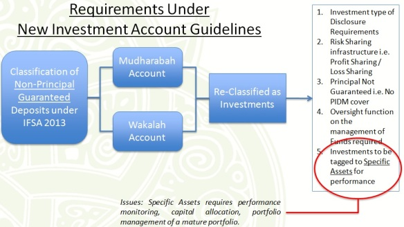 Investment Account Guidelines
