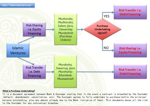 Equity Financing2